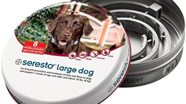Bayer Seresto Flea and Tick Collar for Large Dogs, 8 Month Protection